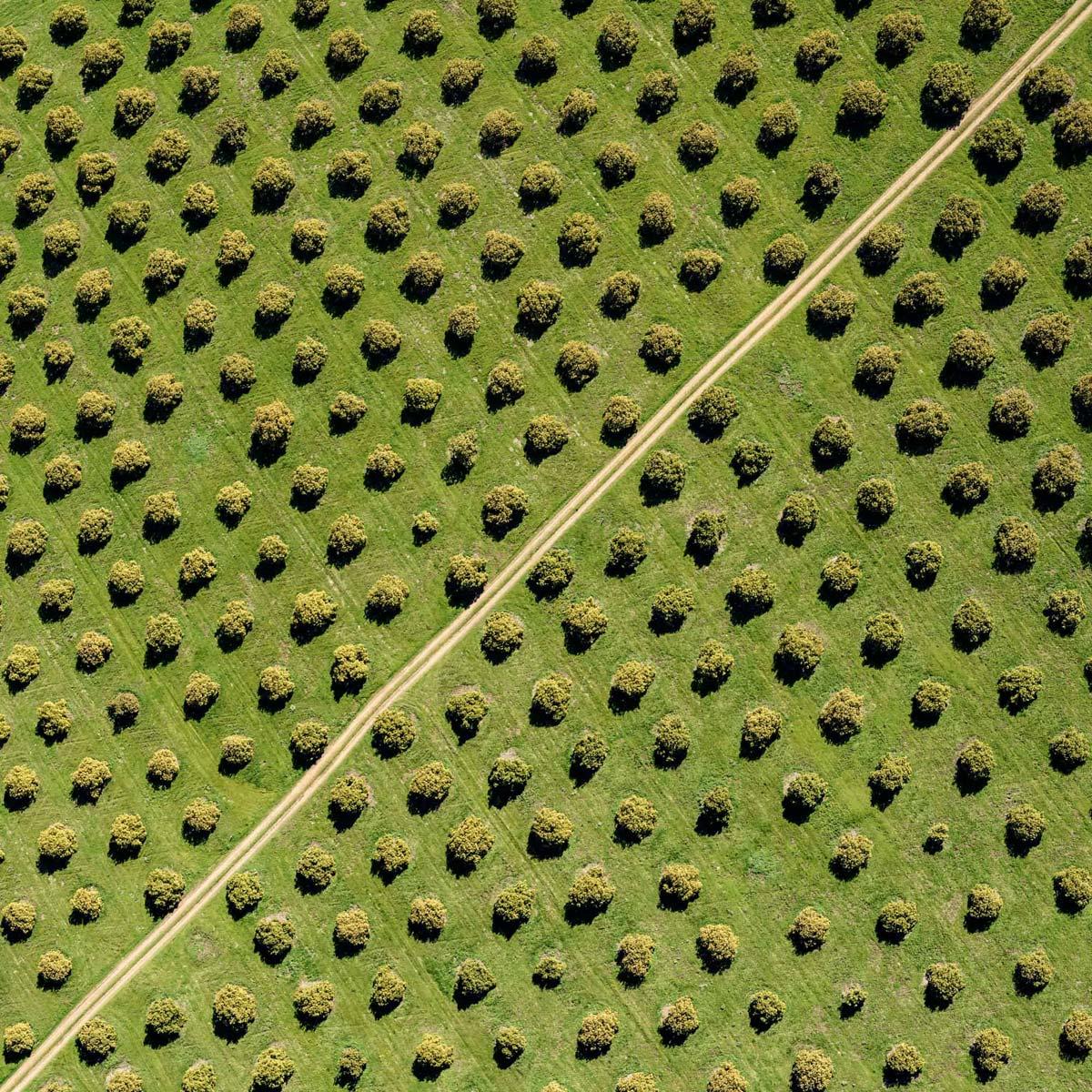 Мitch Кouse - Нефть и сельхозугодья