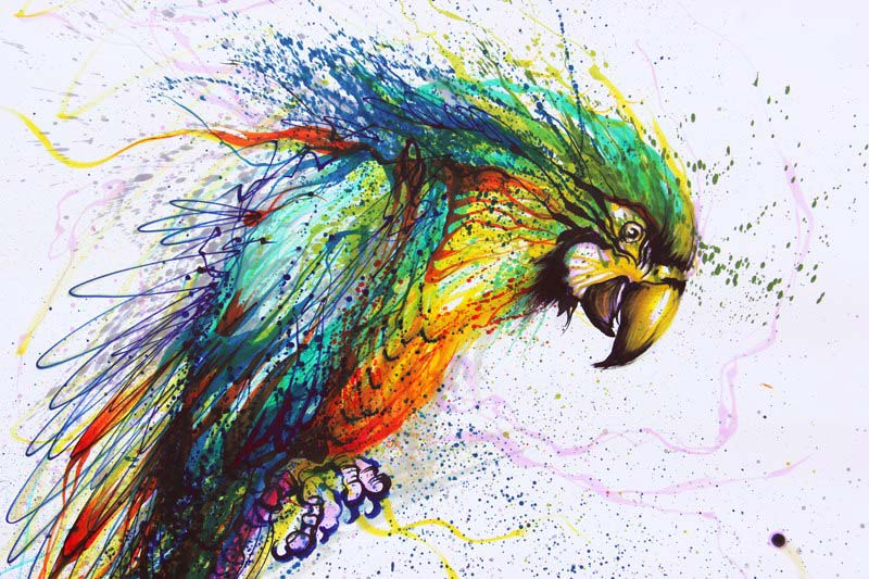 Chen Yingjie - Попугай