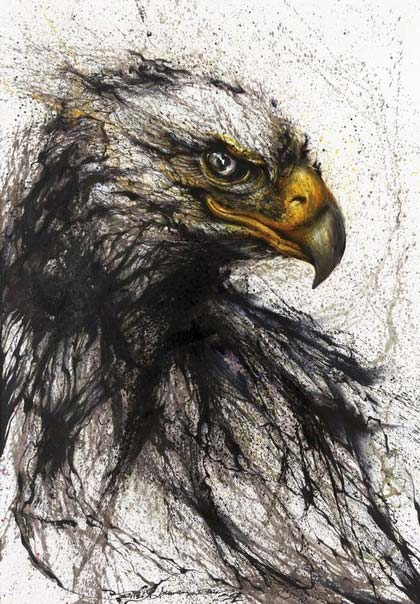 Chen Yingjie - Орел