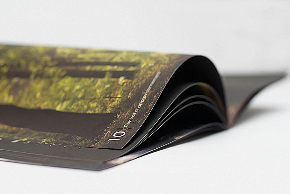 Дизайн брошюры, идеи и вдохновение
